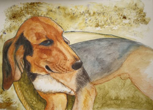 Theo Harehound watercolour