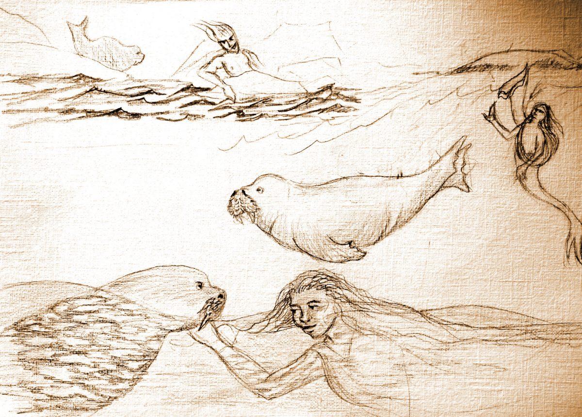 Whimsical Walrus Works